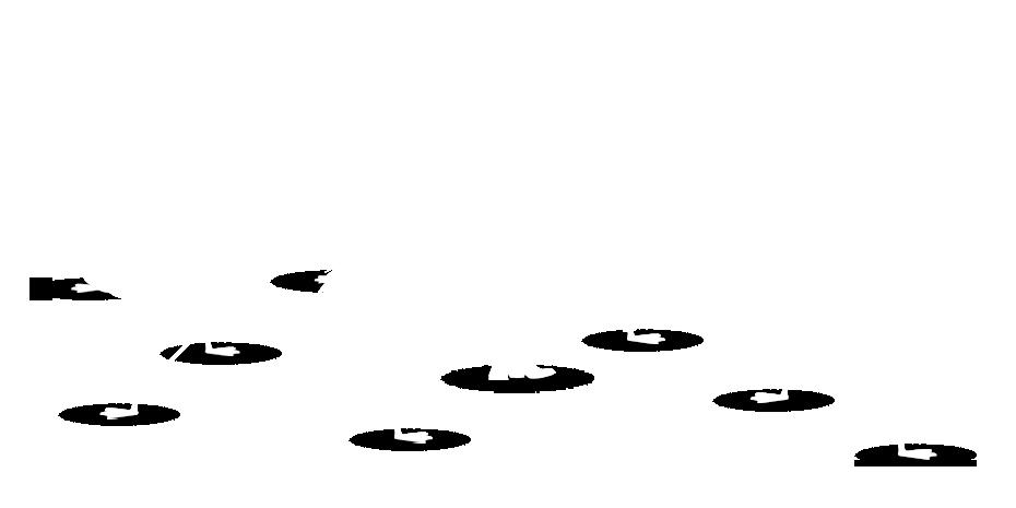 No flamingos message