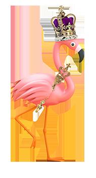 ellie the flamingo