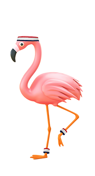 larry the flamingo
