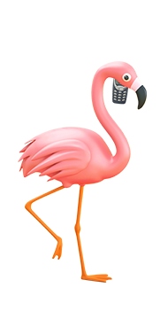 ollie the flamingo