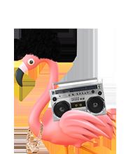 reggie the flamingo